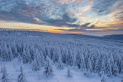 Germany, Lower Saxony, Harz National Park, winter landscape at sunset - p300m1449671 by Patrice von Collani