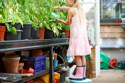 Girl standing on stool to water the plants in greenhouse - p924m1067316f by Peter Muller