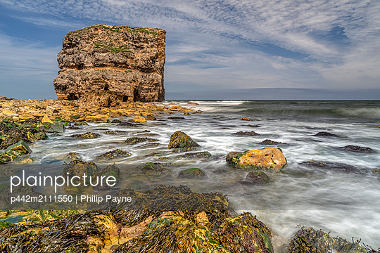 Marsden Rock, a 100 feet (30 metre) sea stack off the North East coast of England, situated at Marsden, South Shields; South Shields, Tyne and Wear, England - p442m2111550 by Philip Payne