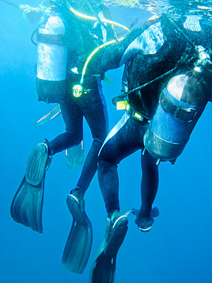 Two divers underwater - p312m695621 by Susanne Walstrom