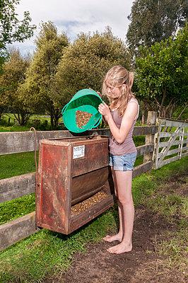 Girl feeding calfs - p1201m1040611 by Paul Abbitt