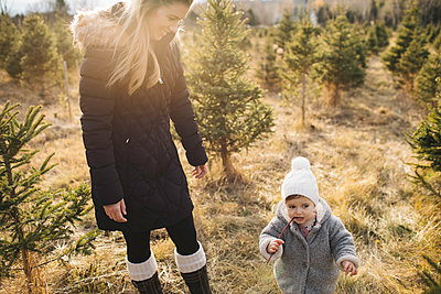 Mother and baby girl in Christmas tree farm, Cobourg, Ontario, Canada - p924m1230182 by Jennifer van Son