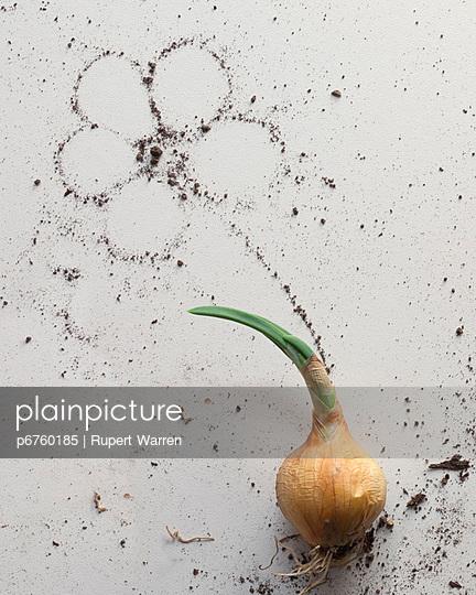 Wachstum - p6760185 von Rupert Warren
