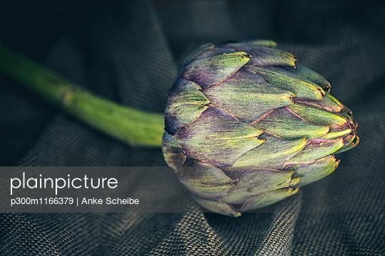 p300m1166379 von Anke Scheibe