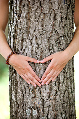 Hände formen ein Herz vor einem Baum, Steiermark, Österreich - p1316m1160655 von Harald Eisenberger