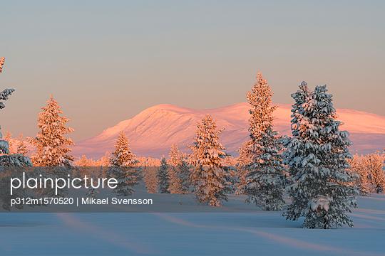 p312m1570520 von Mikael Svensson