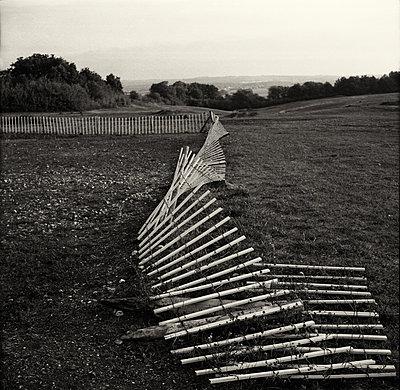 Fallen fence - p1365m1355191 by John Heseltine