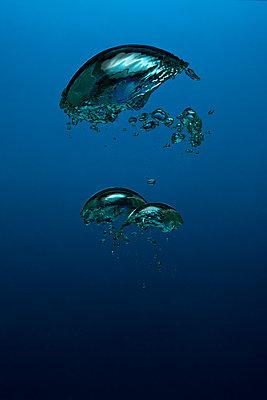 Air bubbles, underwater - p1652m2257793 by Callum Ollason