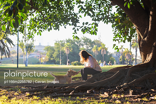 A girl with dog sits on roots of  huge ficus tree in the city park - p1166m2255782 by Cavan Images
