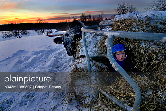 p343m1089807 von Bridget Besaw