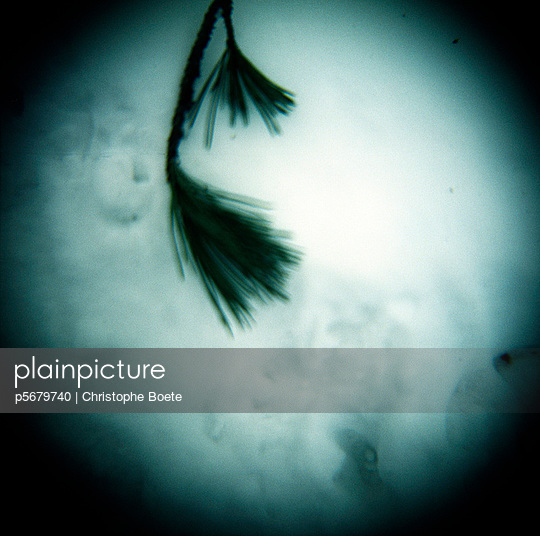 Pinhole camera - p5679740 by Christophe Boete