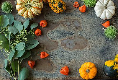 Autumnal decoration, ornamental pumpkins - p300m2042197 von JLPfeifer