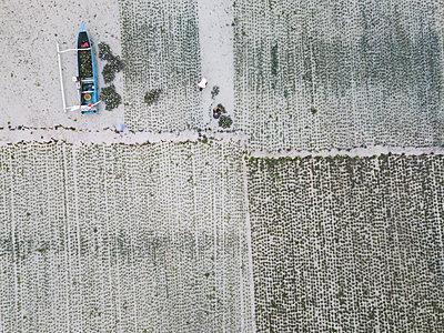 Indonesia, Sumbawa, Kertasari, Worker at seaweed plantation - p300m2104106 von Konstantin Trubavin
