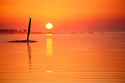 Sunrise over a calm sea in Hogby on Oland Sweden. - p5750084 by Stefan Ortenblad