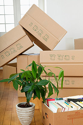 Stack of cardboard boxes - p6090356f by DRESDEN photography