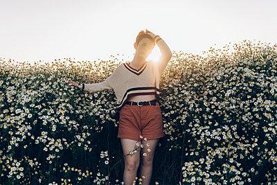 Field of Daisies - p1507m2100332 by Emma Grann
