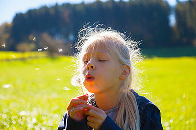 Girl blowing seeds from dandelion clock in field, backlit - p429m2068634 by Henglein and Steets