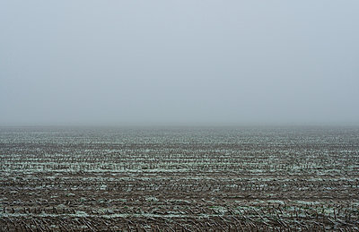 Fog in Friesland - p1132m973434 by Mischa Keijser