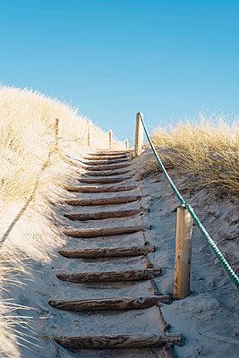 Denmark, Hirtshals, path through dunes - p300m1189224 by Jana Mänz