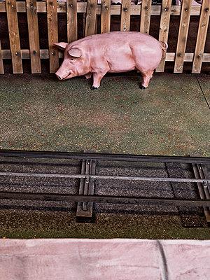 Rosa Schwein aus Plastik - p318m1477367 von Christoph Eberle
