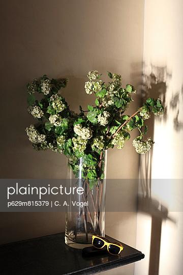 Blumenstrauss mit Sonnenbrille - p629m815379 von C. A. Vogel