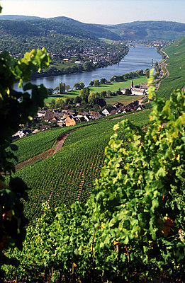 Moselle - p2680283 by Andres Wertheim