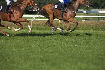 Galopprennen - p2686530 von Jana Kay