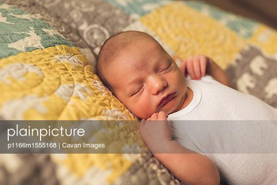 p1166m1555168 von Cavan Images
