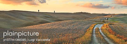 p1377m1392345 von Luigi Vaccarella