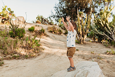 Preschool aged boy standing on rock in cactus garden with arms raised - p1166m2136681 by Cavan Images