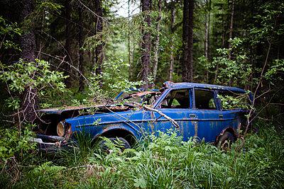 Autowrack im Wald  - p1579m2193468 von Alexander Ziegler