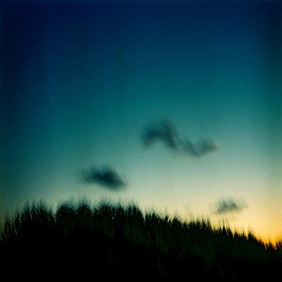 nightfall   - p5673566 by Sandrine Agosti-Navarri