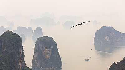 Aerial view over misty Ha Long Bay and tall rock pillars - p1100m2271434 by Mint Images