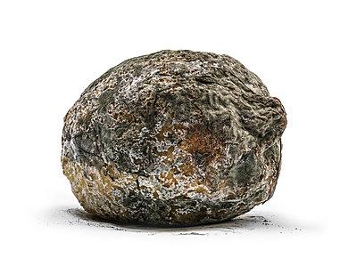 Verschimmelte Zitrone - p1353m1201739 von Federico Naef