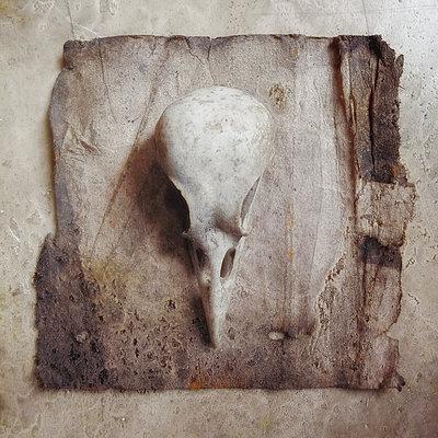 Skull - p1633m2209010 by Bernd Webler