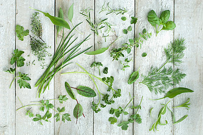 Different fresh herbs on white wood - p300m1052863f by Achim Sass