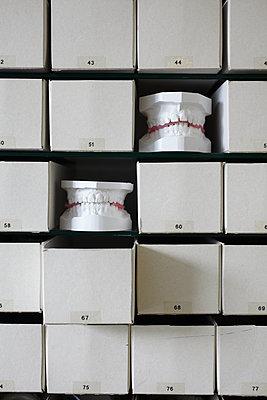 Germany, Bavaria, orthodontia, plaster casts, sets of teeth - p300m2213668 by Bodo Mertoglu