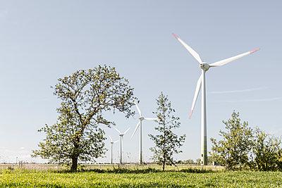 Windräder und Bäume - p893m2021685 von Thomas Ebert