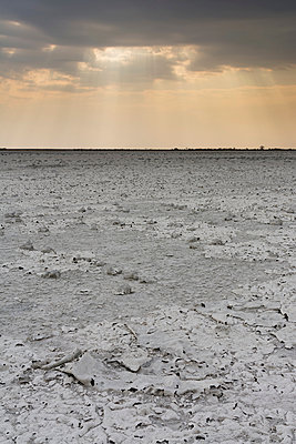 A storm approaching the salt pan, Nxai Pan, Botswana , Africa - p924m1480589 by Delta Images