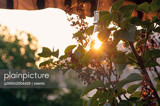 Sunshade, solar-powered lightbulb at sunset - p300m2004439 von seenic