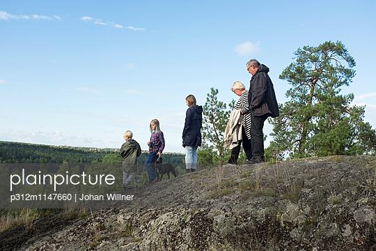 p312m1147660 von Johan Willner