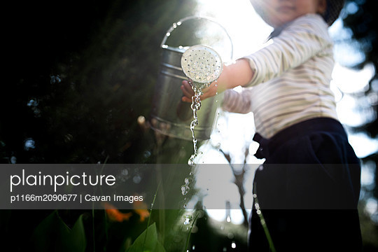 Little boy watering plants in the garden in Spring on a sunny day - p1166m2090677 by Cavan Images