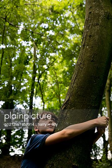 Junge lehnt an einem Baum im Wald - p1212m1152914 von harry + lidy