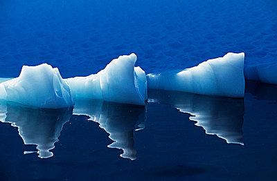 Iceberg - p6520052 by Mark Hannaford