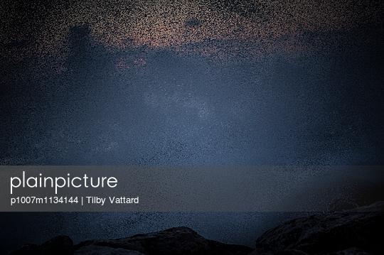 Spalsh - p1007m1134144 by Tilby Vattard