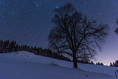 Night sky in the Alps - p282m953190 by Holger Salach