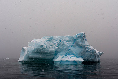 Snowstorm over icebergs in Portal Point, Antarctica - p429m1226772 by Delta Images