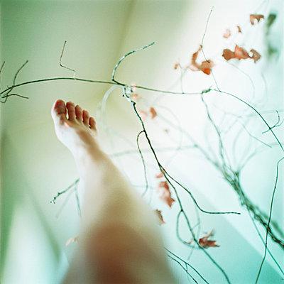light foot   - p5673473 by Sandrine Agosti-Navarri