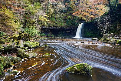 Sgwd Gwladus waterfall surrounded by autumnal foliage - p871m732015 by Adam Burton