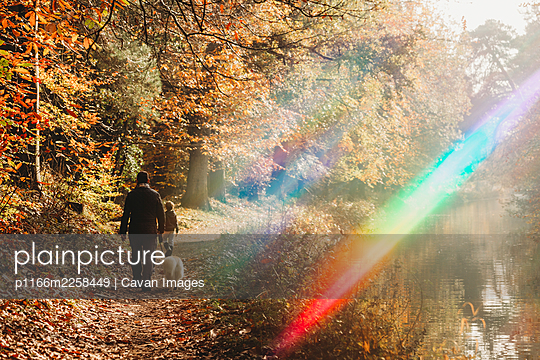Man, child and dog walking on canal towpath with rainbow flare in fall - p1166m2258449 by Cavan Images